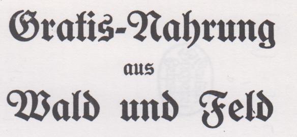 07_Stätter_1919_pI_Kriegskochbuch_Wildfrüchte