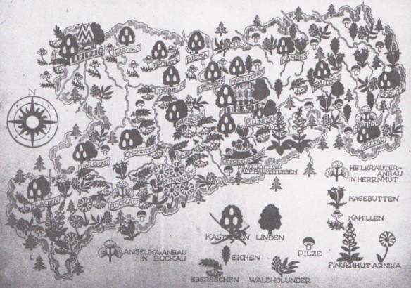 14_Nahrung und Natur_03_1949_H3-4_pI_Wildfrüchte_Eichen_SBZ_Karte