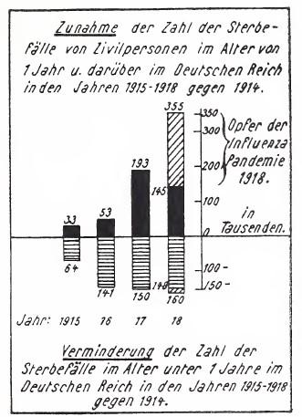 01_Roesle_1928_p28_Uebersterblichkeit während des Ersten Weltkrieges