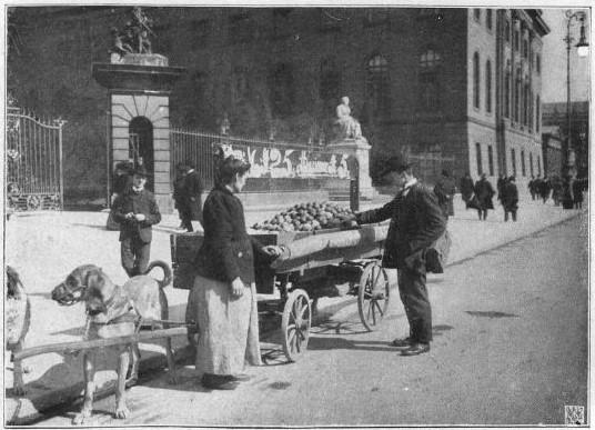 01_Berliner Leben_10_1907_Nr01_p10_Straßenhandel_Südfrüchte_Apfelsinen_Käufer-Verkäufer_Hundefuhrwerk