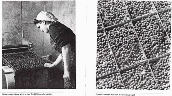 18_Mosolff_Hg_1940_p18-19_Tiefkühlen_Gefriertechnik_Erbsen