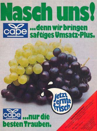 30_Der Verbraucher_29_1975_Nr06_p07_Obst_Trauben_Cape_Erntefrisch