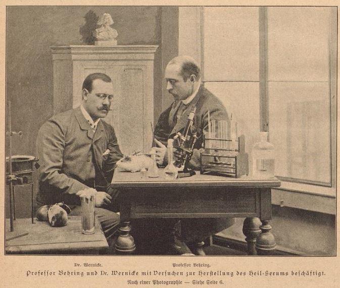 054_Illustrirte Frauen-Zeitung_22_1895_p008_Bakteriologie_Laboratorium_Diphterie_Emil-Behrung_Erich-Wernicke_Meerschweinchen