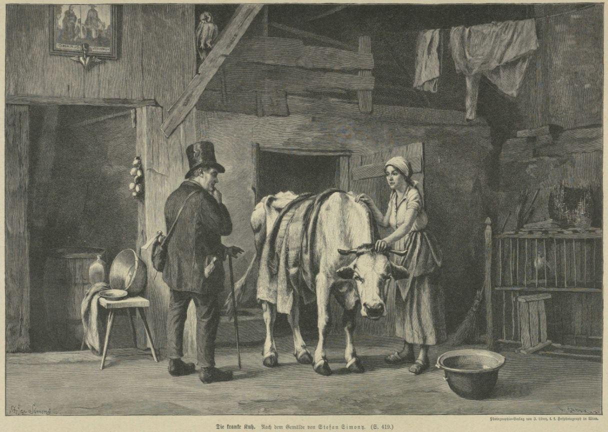 03_Illustrirte Welt_43_1895-96_p417_Bauernhof_Bauern_Rindvieh_Kuh_Tierkrankheit