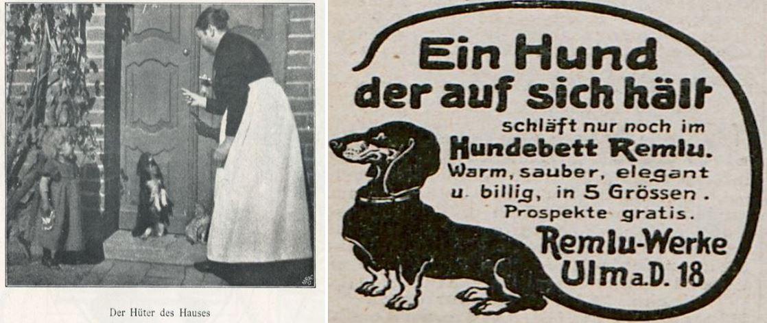 05_Berliner Leben_05_1902_Nr04_p059_Fliegende Blaetter_138_1913_Nr3520_Beibl_18_Hunde_Haustiere